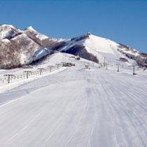 *岩原高原スキー場/ゲレンデ直近☆ウインタースポーツの拠点に最適です。