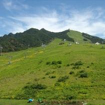 *風景/春〜秋は、緑豊かな岩原高原です。