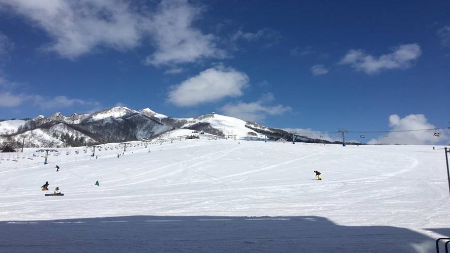 *岩原高原スキー場/初級・中級者向けのコースを多く配置したレイアウトは、どなたにも滑りやすく快適!