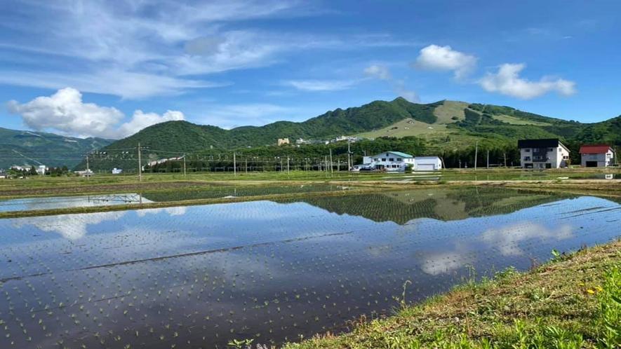 *周辺風景/田植えの時期には水田に山の緑と空の青さが映り、美しい農村の風景が見られます。