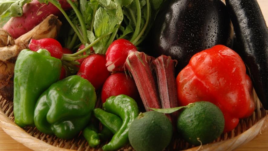 *顔の見える生産者が作る地元の野菜を使っています。