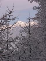 メゾン・ド・ビュー八ヶ岳周辺の景色