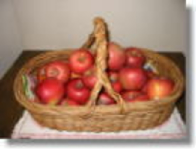 信州りんご