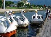 諏訪湖スワンボート