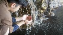 【温泉ソムリエ】お湯の状態を絶えずチェックしております。