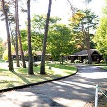 *中庭/朝のお散歩も気持ち良い、松林に囲まれた中庭はとても静か。