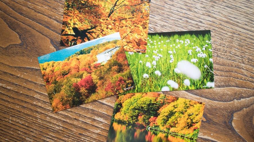 *【お土産/ポストカード】春夏秋冬楽しめる八幡平。旅の思い出にいかがですか?