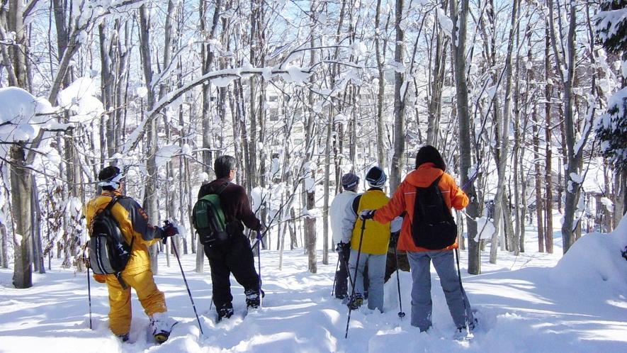 【スノーシュー】スタッフと一緒に雪の上をトレッキング!運が良ければ野生動物に会えるかも♪
