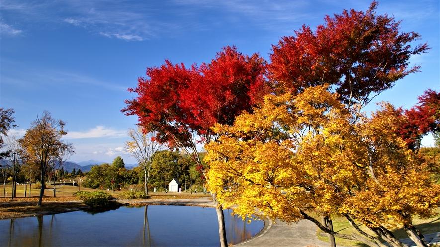【ホテル周辺(秋)】10月の中頃から紅葉をお愉しみいただけます。≪見頃:10月中旬~11月上旬≫