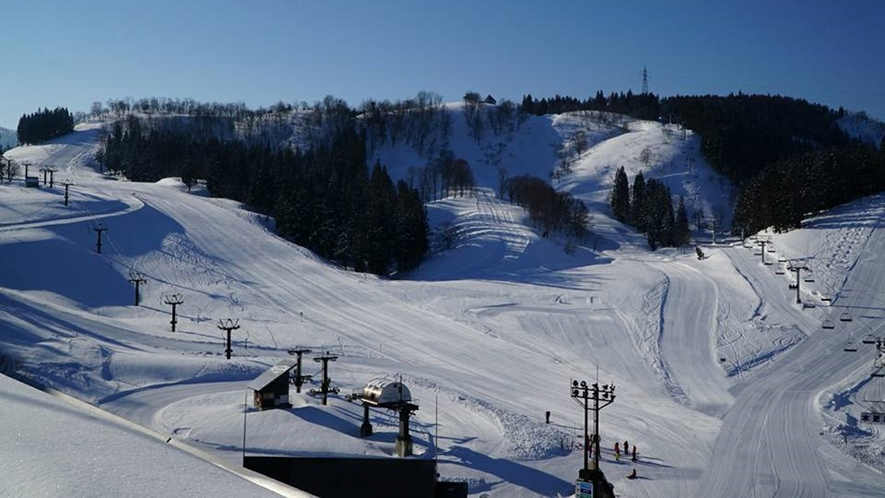 【ニュー・グリーンピア津南スキー場】広々としたゲレンデ。3月まで良好な雪質を楽しめます。
