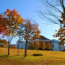 【外観<秋>】ホテル周辺の木々が、綺麗な赤や黄色に色づきます。≪見頃:10月中旬~11月上旬≫
