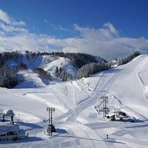 【ニュー・グリーンピア津南スキー場(全景)】広々としたゲレンデ。3月まで良好な雪質を楽しめます。