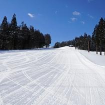 【スキー場】<ゲレンデ>最高斜度14度となだらかで、ファミリー・初心者に人気のスターダストコース。