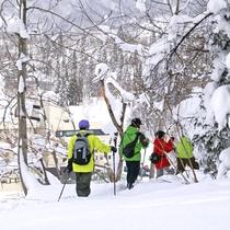 *【スノーシュー】スタッフと一緒に雪の上をトレッキング!運が良ければ野生動物に会えるかも♪