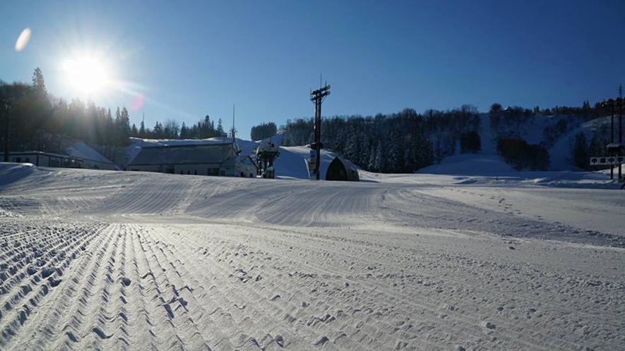 【スキー場】<ゲレンデ>斜度が15~30と幅があり、中級~上級まで変化を楽しめるコスミックBコース