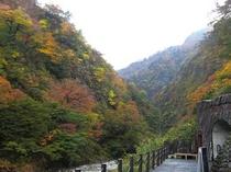 清津峡 紅葉2