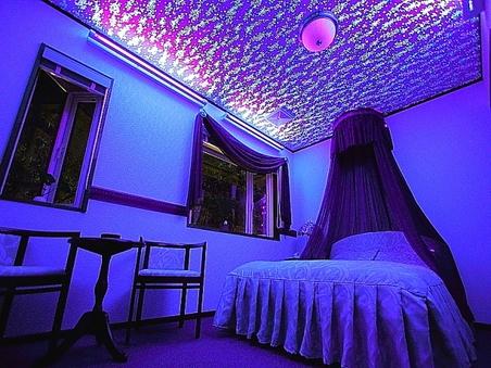 天蓋付きダブルベッドルーム