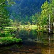 ■【夏の上高地】澄んだ池と緑に心癒されます