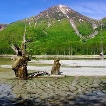 ■【夏の上高地】焼岳と大正池