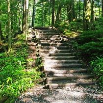 ■【上高地散策】少しハードな道もあります
