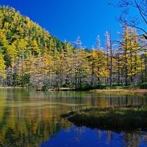 ■【秋の上高地】雄大な上高地の景色