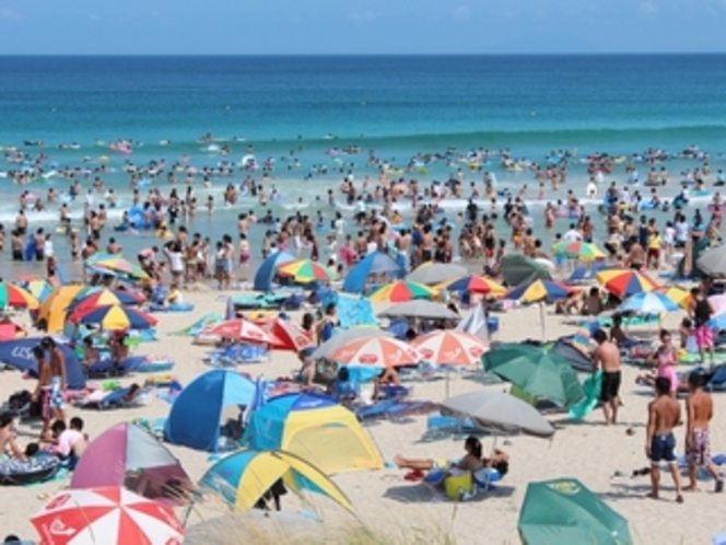 夏の白浜海水浴場