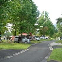 夏のお楽しみ キャンプ