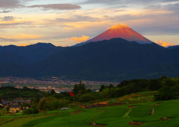 棚田から一望する『富士山』