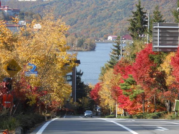 白樺湖(紅葉)