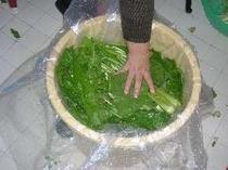 お手製の野沢菜