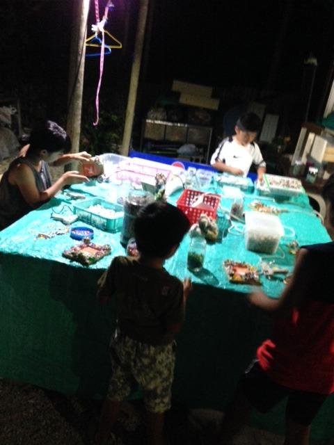 砂浜で拾う珊瑚のかけらと琉球ガラスで作るマリンクラフト体験
