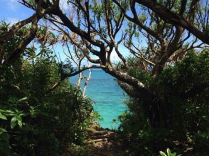 島の東側釣りスポット