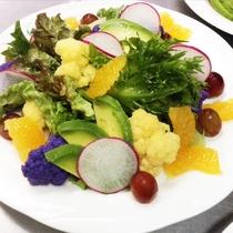 朝食イメージ 早春のtossed salad 地物の紫のカリフラワーや甘酸っぱい甘夏をトッピング