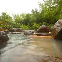 【離れの露天風呂】のんびり1時間♪そよぐ風 季節の音(貸切風呂付プランのみ)