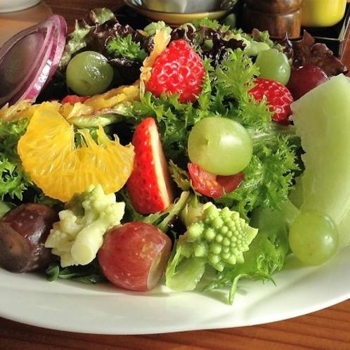 【朝食・トスサラダ】ヘルシーでボリューム満点のサラダが朝を彩る 白胡麻油のドレッシングで和えて