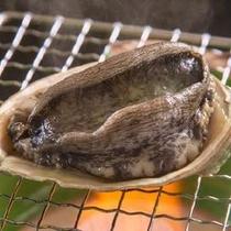 ◆房州産アワビの踊り焼き〜磯の香りと柔らかさが人気の一品