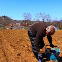 【自家農園】季節ごとにさまざまな大地恵みを収穫します