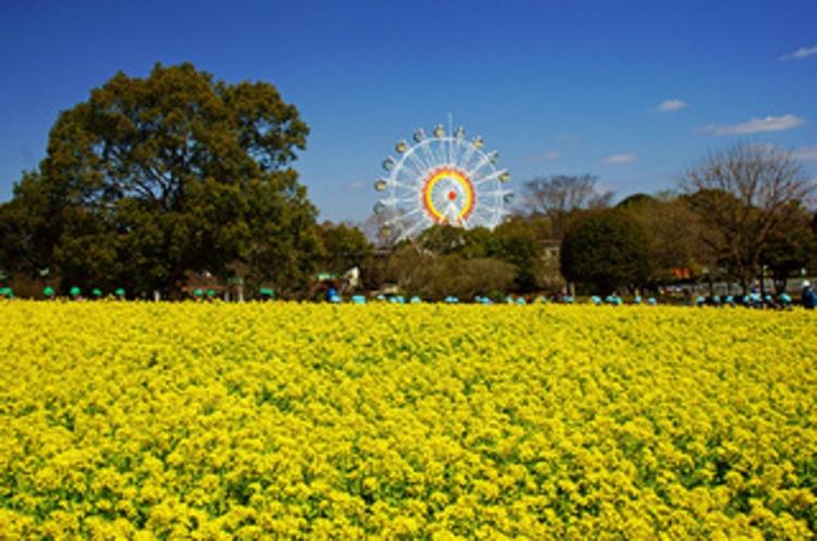 【観光】熊本市動植物園