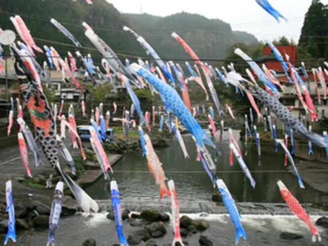 【観光】杖立温泉鯉のぼりまつり