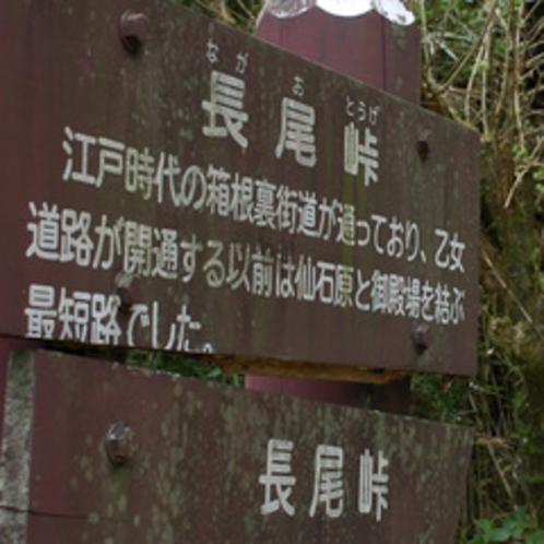 周辺観光 -長尾峠-