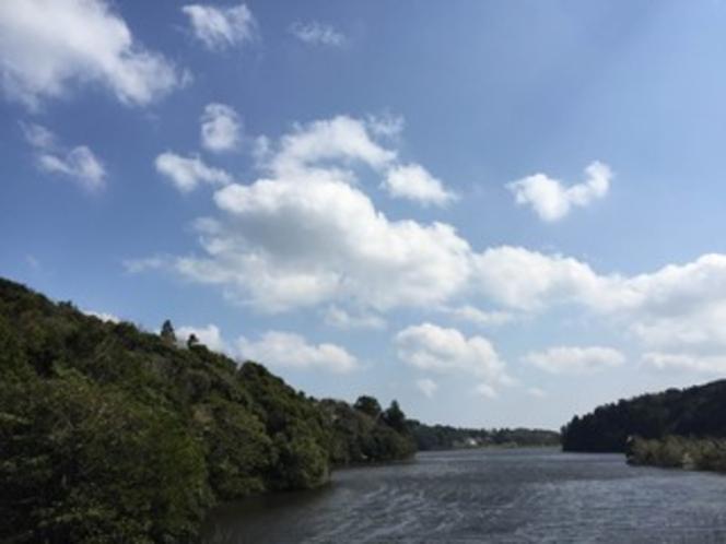 湖畔と緑と青空