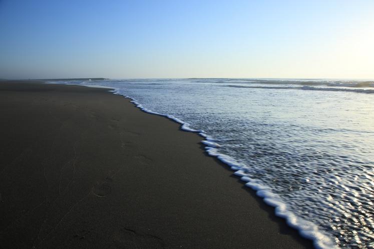 早起きして海までお散歩でリフレッシュ