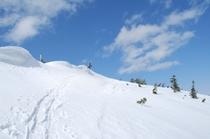 かぐらスキー場ではゲレンデ以外で、こんな場所も楽しめますよ。