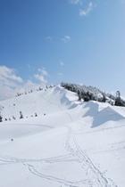 かぐらスキー場のゲレンデ以外の一面銀世界です。