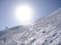 かぐらスキー場は、太陽と青い空と一面銀世界が、とても似合うスキー場です!