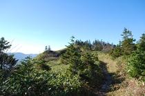 秋の苗場登山 かぐら峰