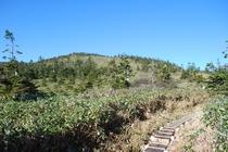 秋の苗場登山 かぐら峰までの道