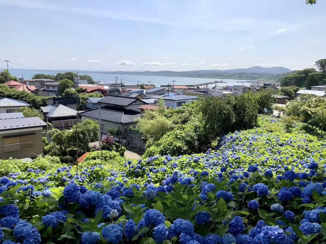 雲昌寺(高台から見える海)