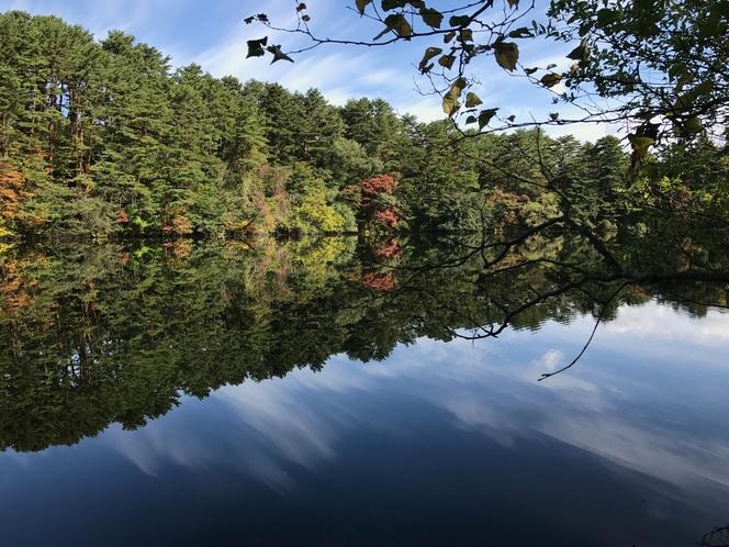 五色沼の桧原湖側入口にある柳沼。ペンション楓から約1.5㎞です。