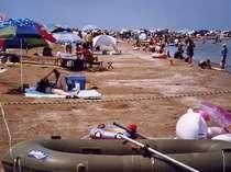 夏の柴垣海岸